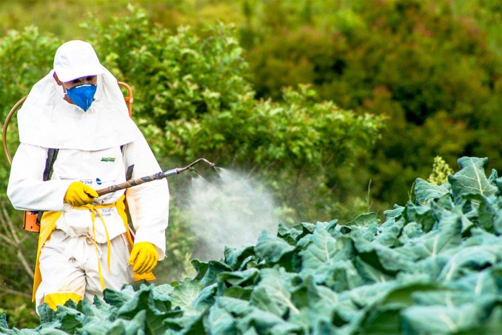 किसान को मिलेगा मुआवजा कीटनाशक से फसल खराब पर