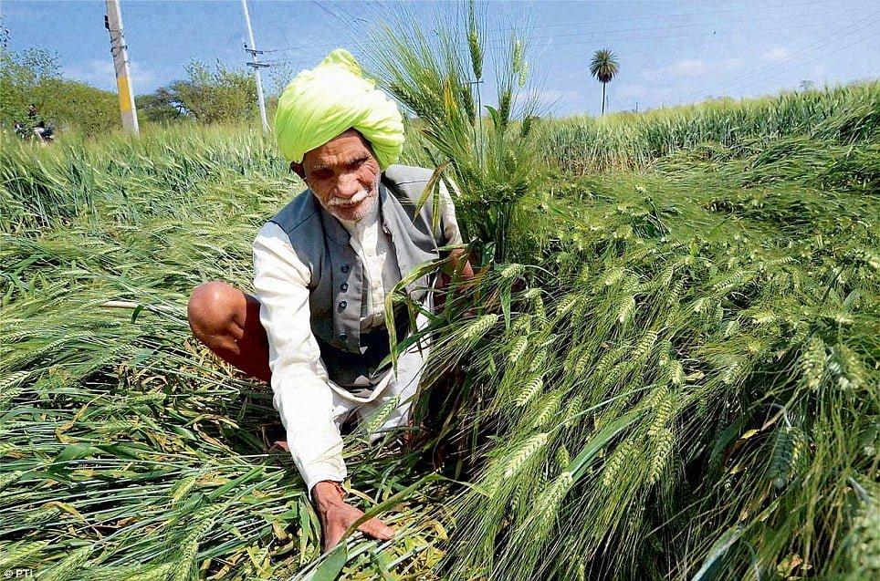 कृषि इनपुट अनुदान