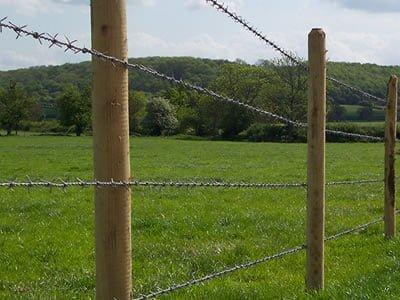 barbed wire tarbandi